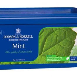 Dodson & Horrell Mint Pepermunt