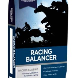 Dodson & Horrell Racing Balancer