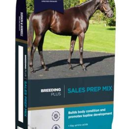 Dodson & Horrell Sales Prep Mix