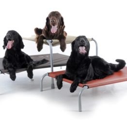 Hondenstretcher Large zelf samen te stellen