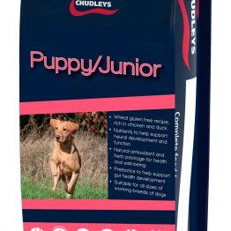Chudleys Puppy Junior hondenbrok