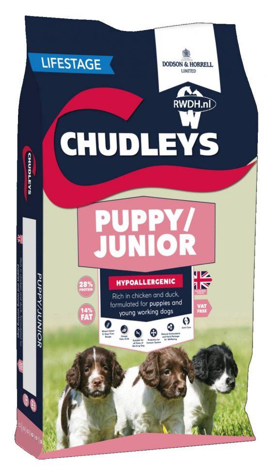 chudleys puppy junior