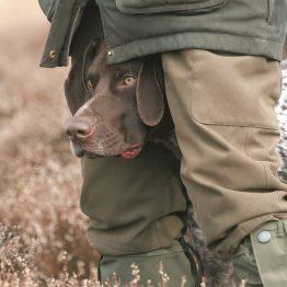 Jachthondenvoer