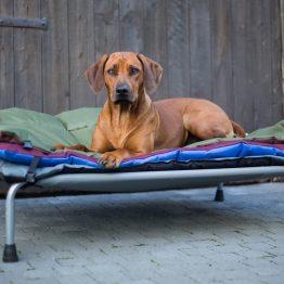 tbv Large HiK9 Hondenbed