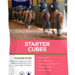 Dodson & Horrell Racing Plus Starter Cubes