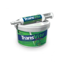 Equine Products Transvite Probiotic